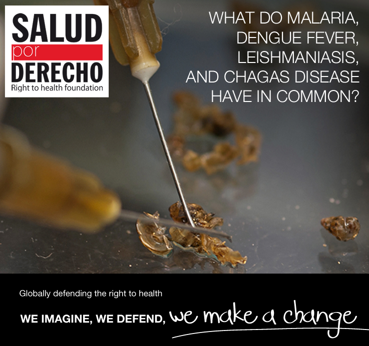 What do Malaria, Dengue Fever, Leishmaniasis, and Chagas Disease Have in Common?