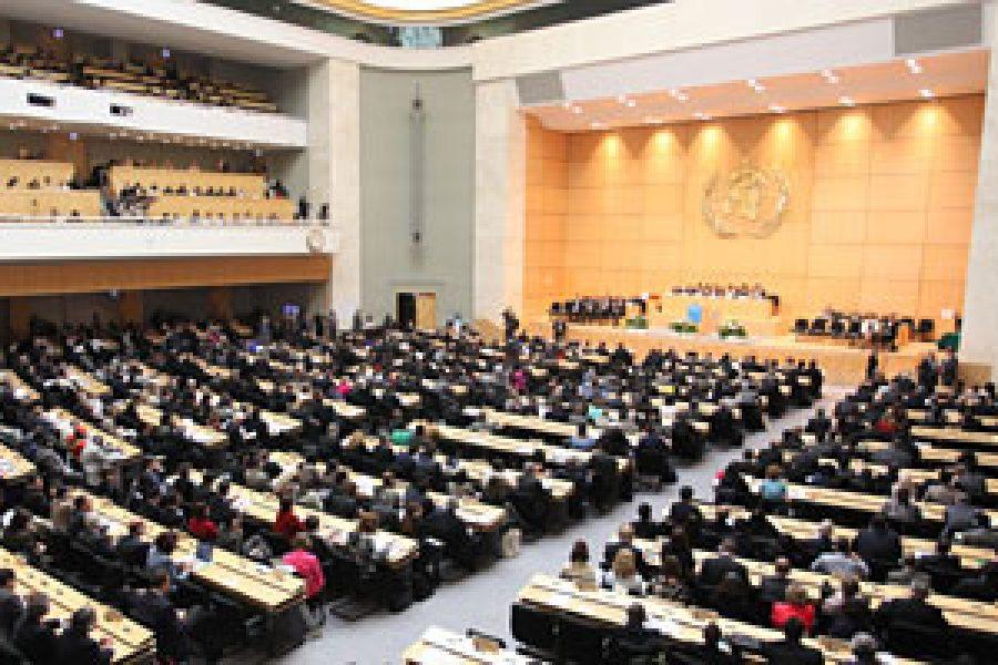 66ª Asamblea Mundial de la Salud: Desafíos y Retos Pendientes