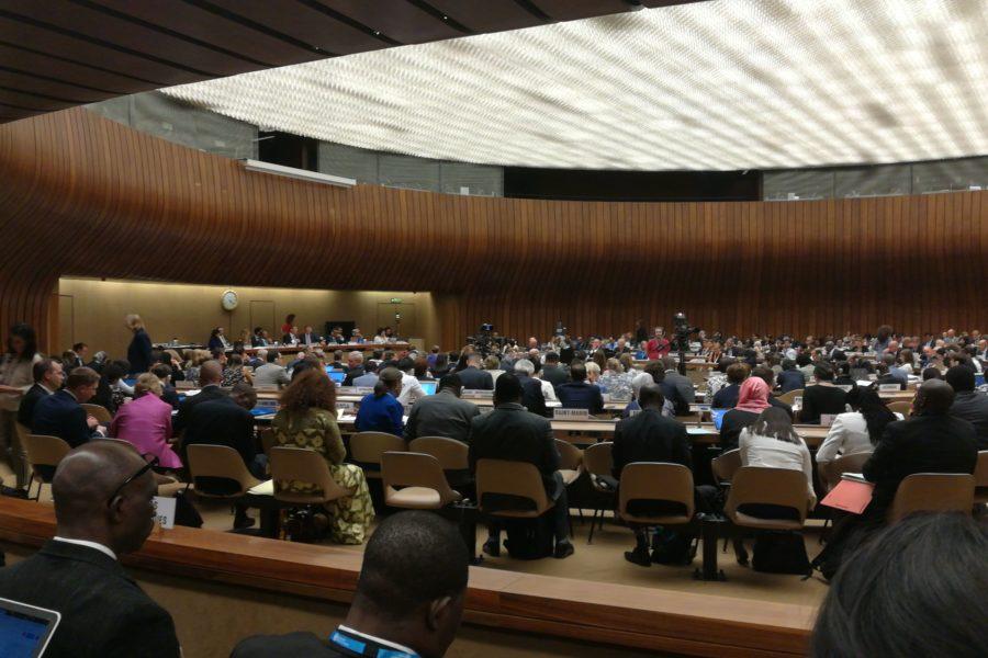 La asamblea de la OMS se compromete con el acceso a los medicamentos