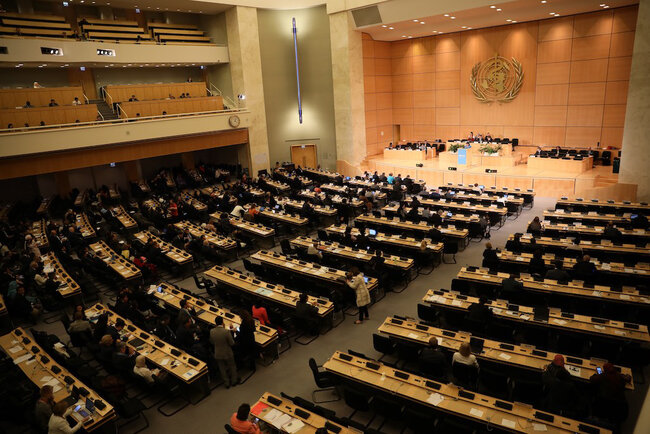 An unprecedent World Health Assembly with high expectations
