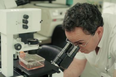 «El CAR-T hace más eficaz a un sistema inmunitario que había fracasado en controlar al tumor»